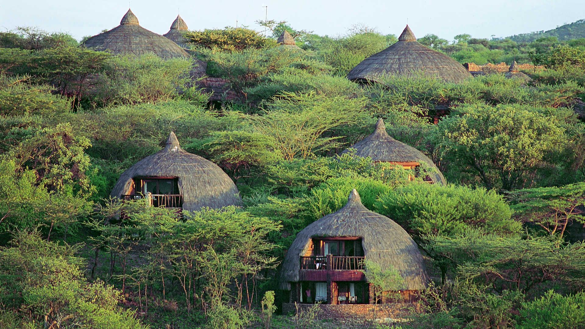serengeti-serena-safari.jpg
